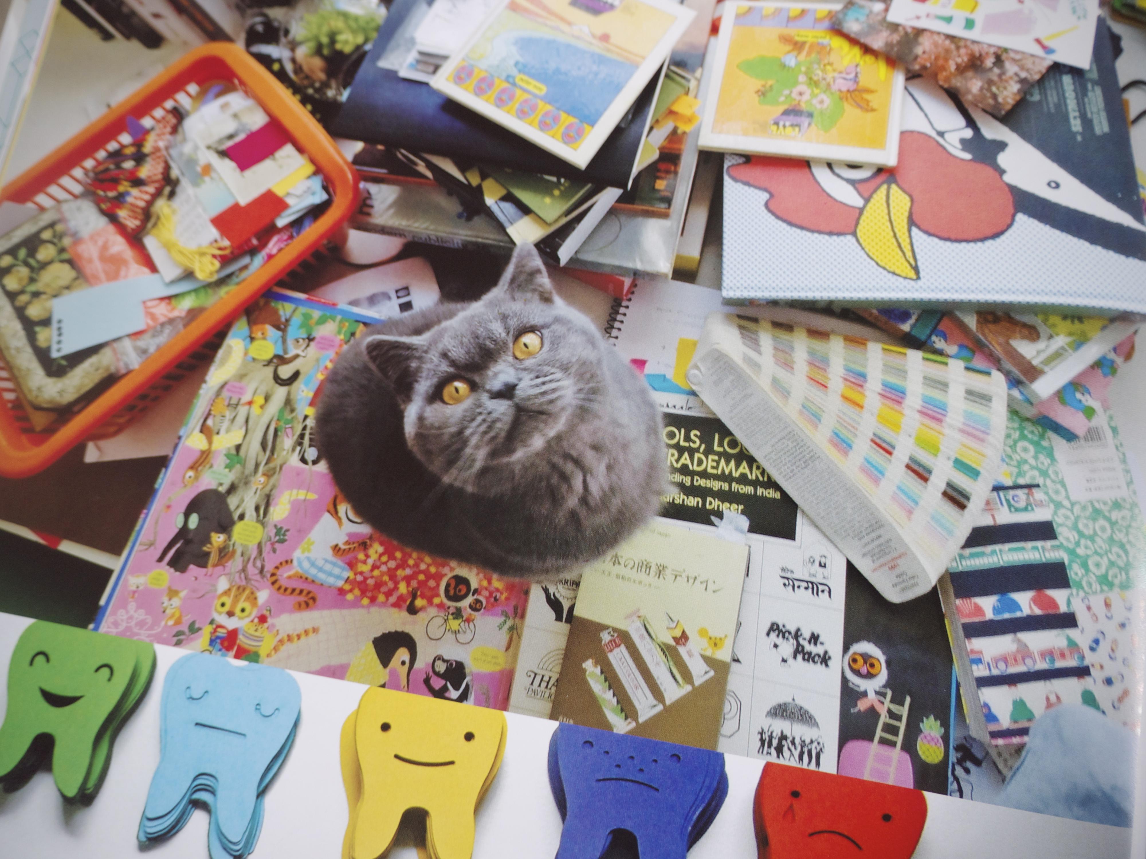 Beci Orpin Find & Keep Book Cat in Studio