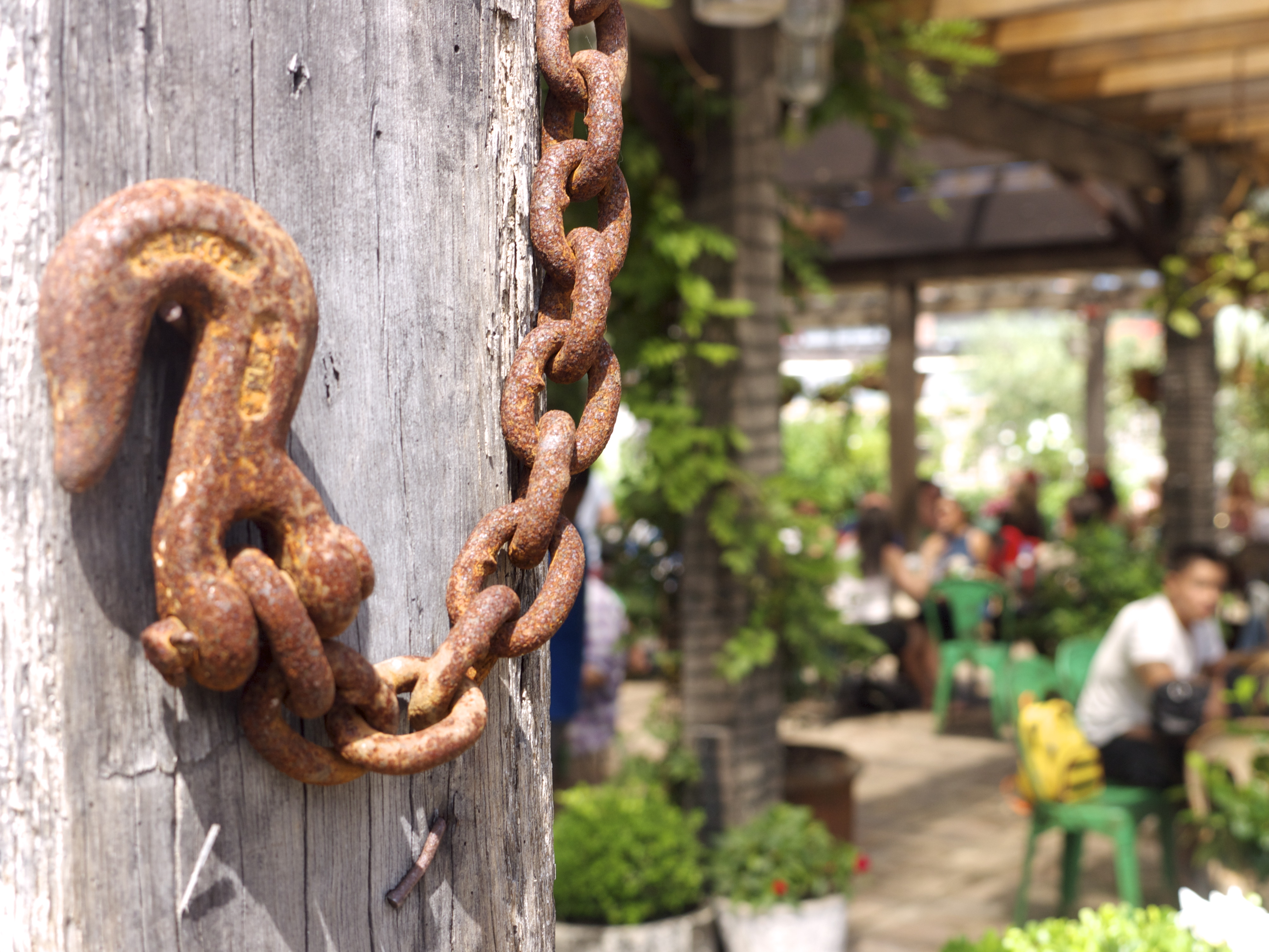 The Grounds of Alexandria - Rusted Chain
