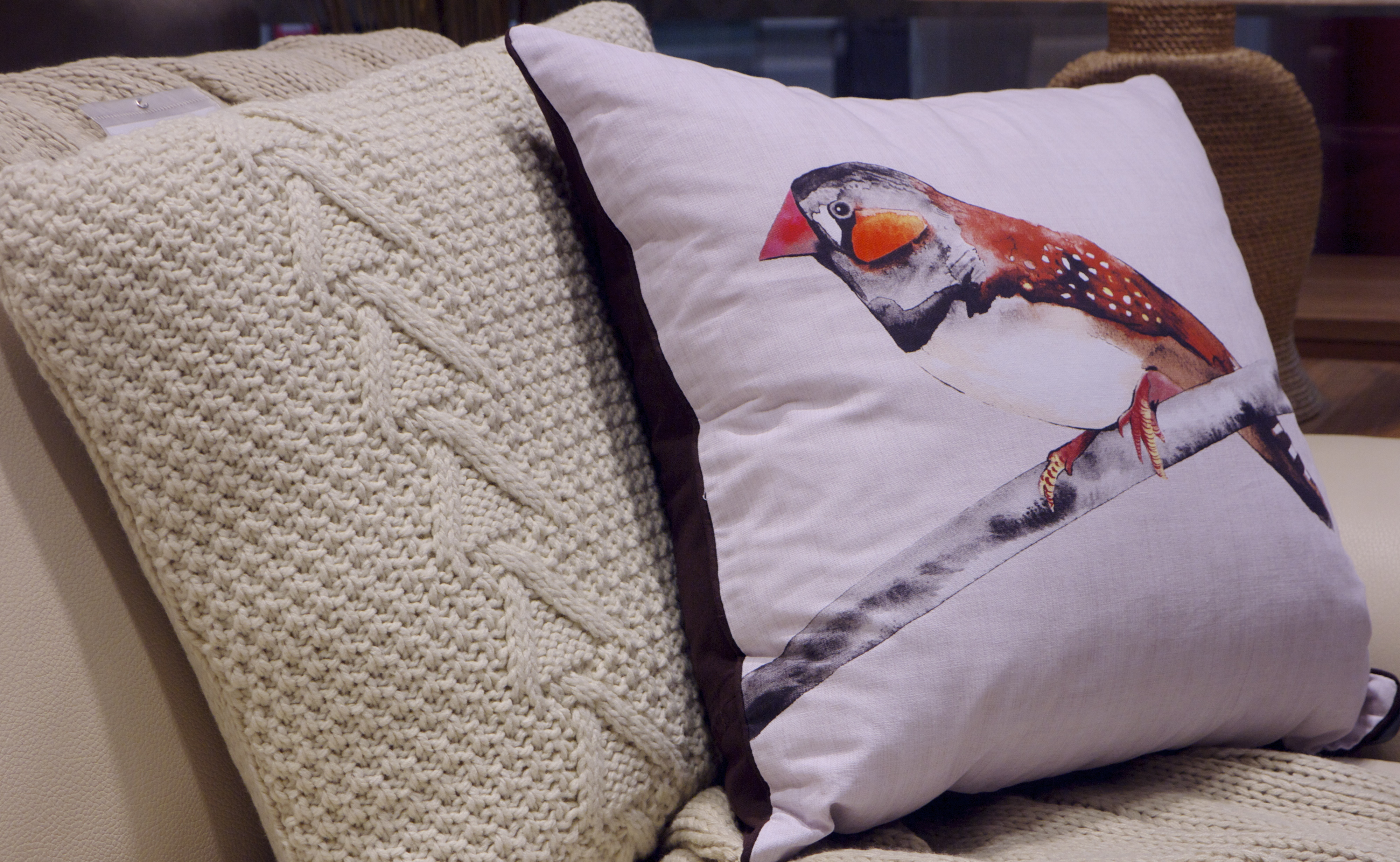 Wren Bird Cushion from Freedom Top Ryde