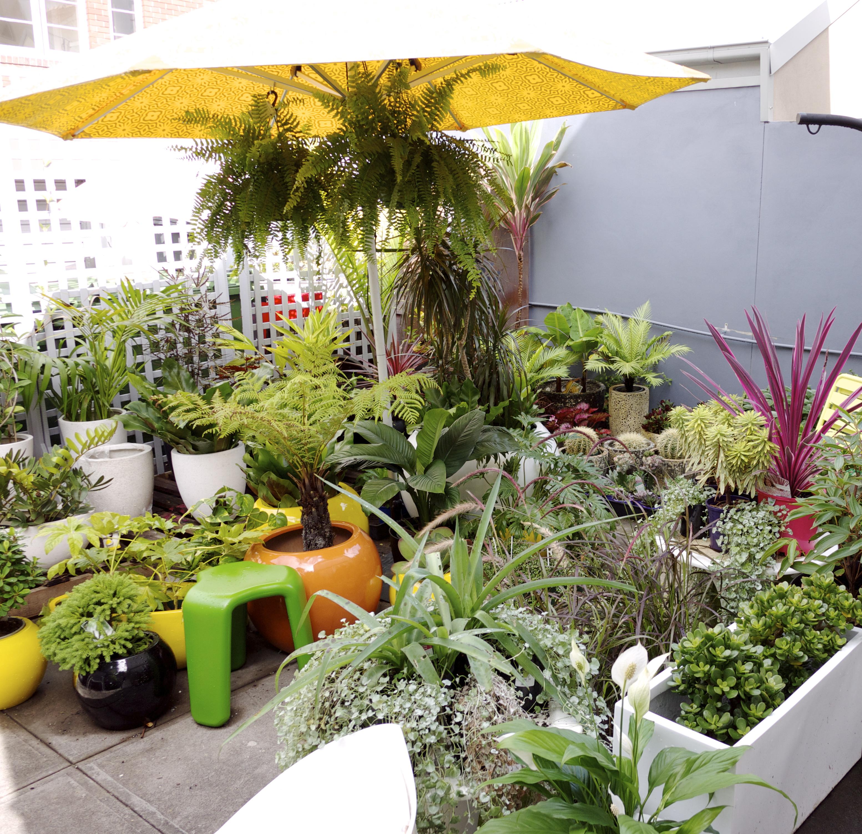 Terrace Outdoor Living - Back Garden