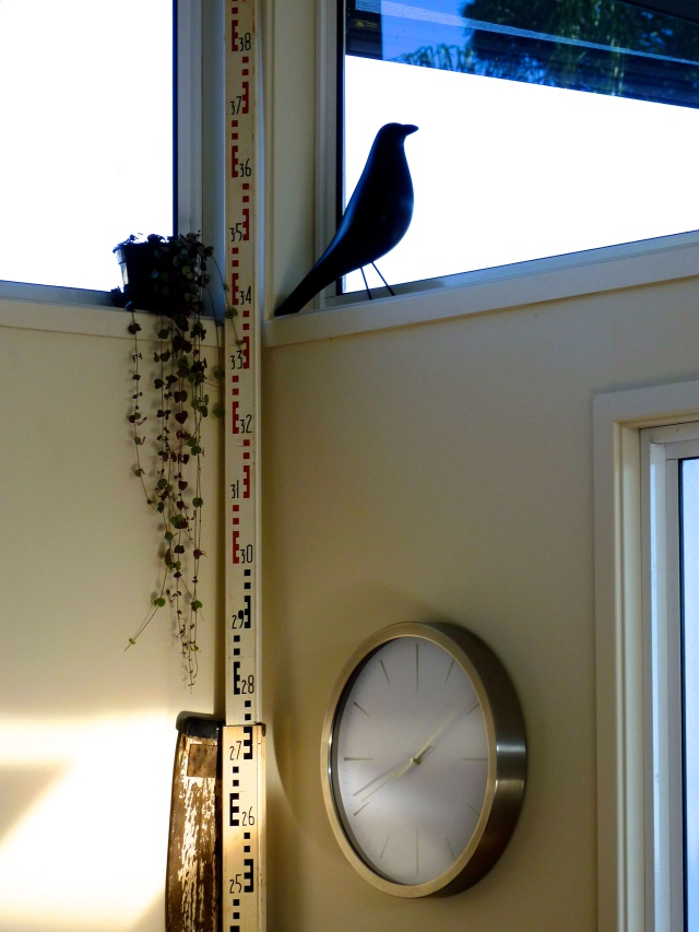 Combined Kitchen and Dining - Bird Ornament