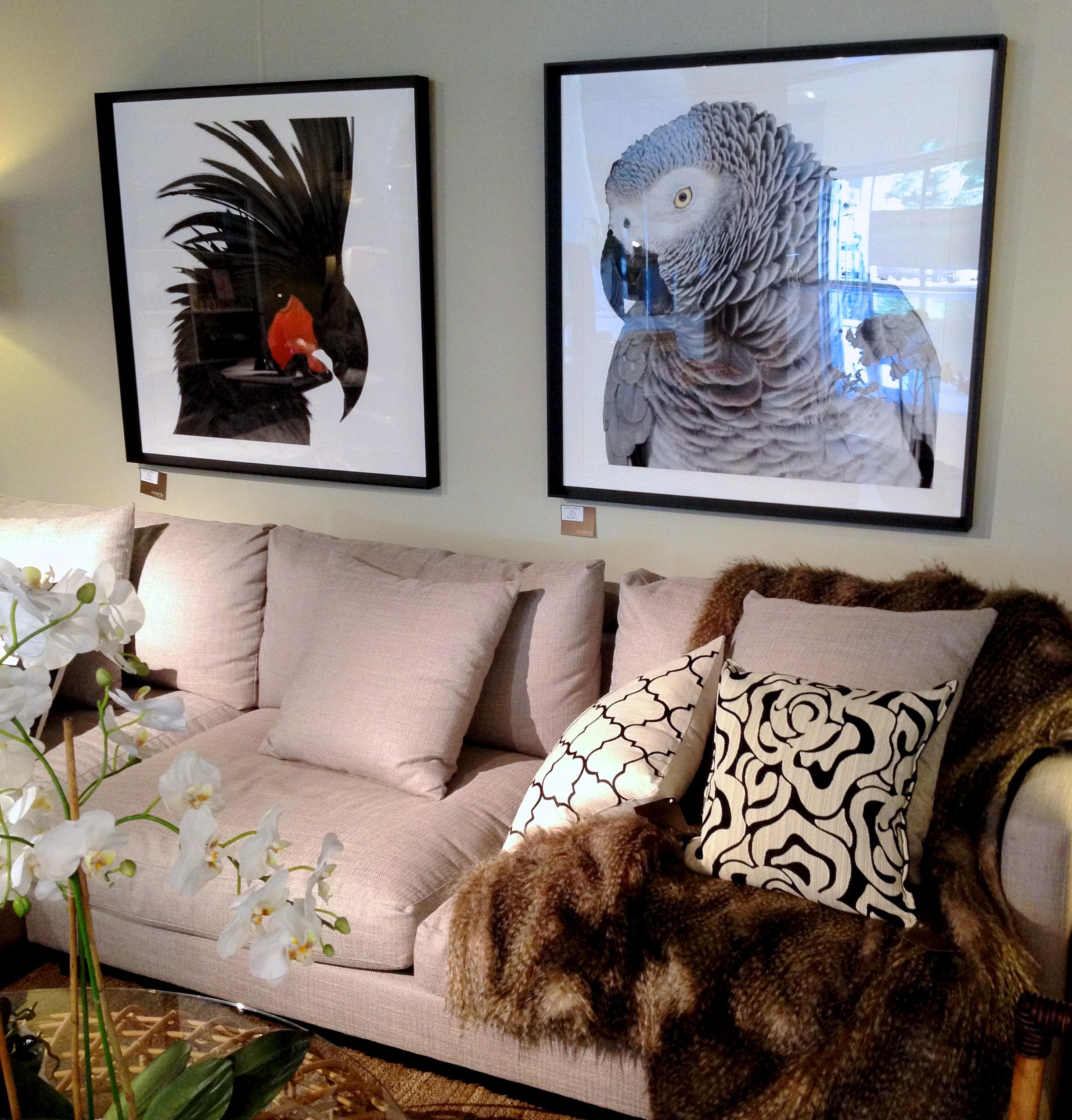 Bird Art - Contents International Design