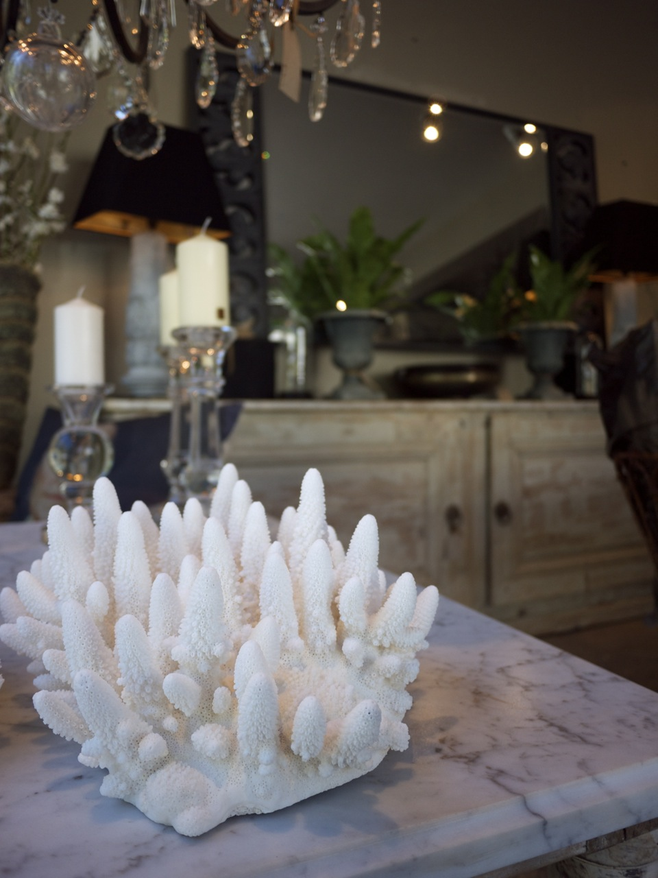Parterre in Woollahra - Coral Ornament