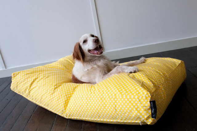 Crashmat Beanbag - Polka Dot Dog Bed