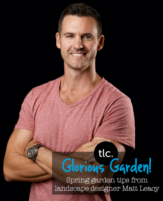 Summer Garden Tips from Landscaper Matt Leacy